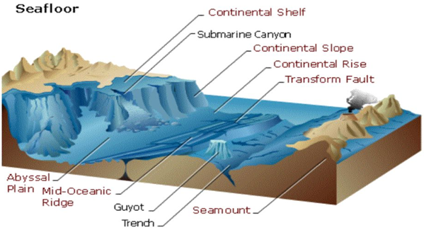 Ocean Features Diagram With Continental Edge Diy Enthusiasts