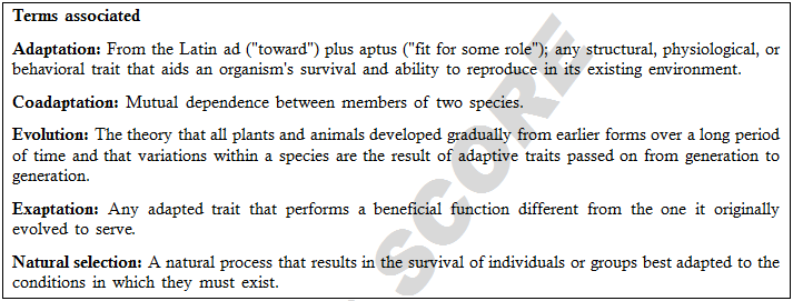 Adaptation Interaction Between Species