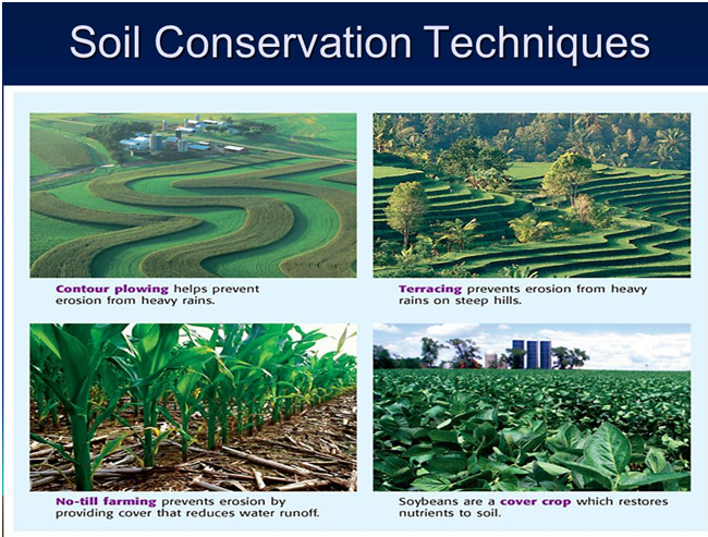 Land degradation soil erosion and deforestation for What does terrace farming mean