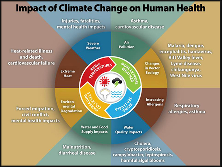 Climate Insights 101