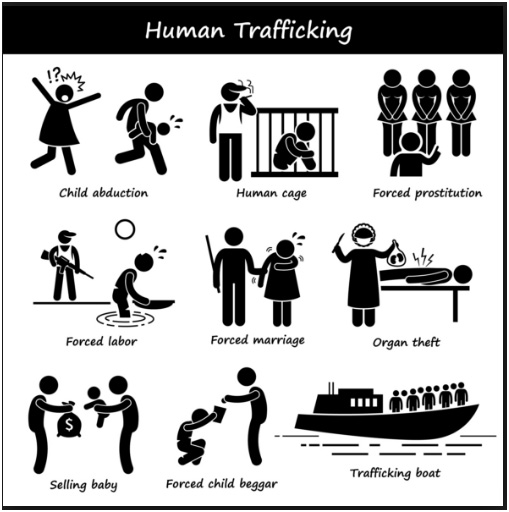 trafficking of humans and the sex slave trade history essay A new era of slave trade: human trafficking there is a dark side of human interaction, a human institution that for centuries has been called slavery slavery is a fearful concept it is as fearful as rape and even murder.